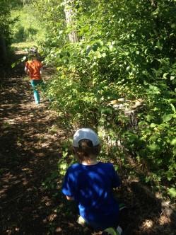 exploring the ravine trail