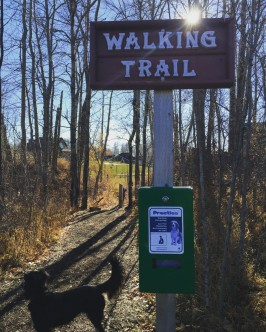 Walking trail complete with doggie bags