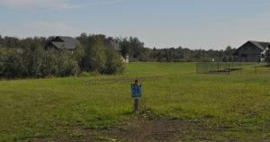 Meadow Dream, Spring Lake Ranch